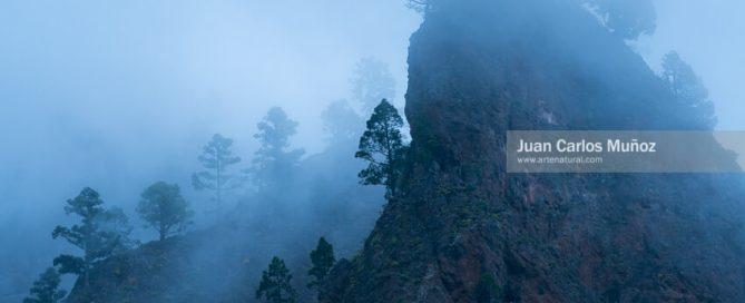 Entrevista a Juan Carlos Muñoz para Leofoto fotografo de naturaleza y paisajes
