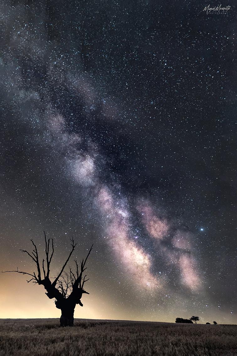 Fotografía nocturna con trípode Leofoto por Miguel Mesquita