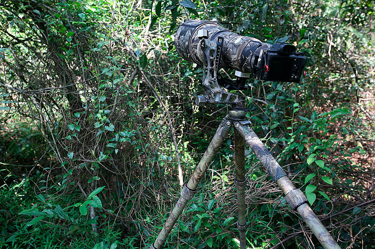 Trípode de carbono Leofoto LS-365CEX Full Camo de camuflaje completo